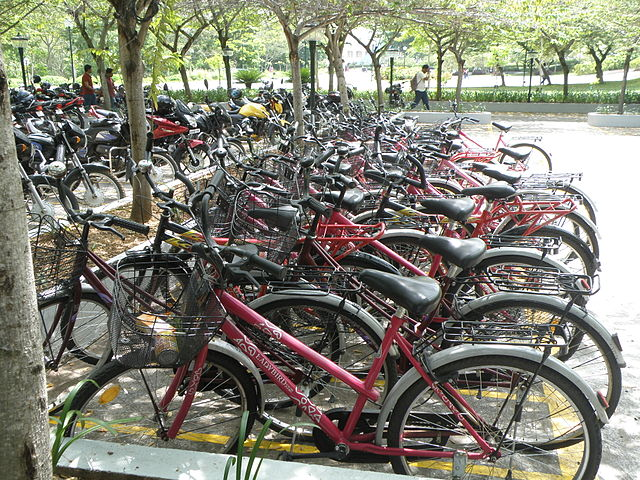Cycles for use by everyone inside the Infosys Mysore Campus.