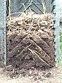 Composteiro 2020, 03b.jpg