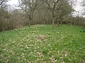 Corner of an orchard on the Daffodil Way - geograph.org.uk - 769174.jpg