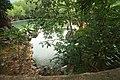 Coron Hot Spring('마퀴닉' 해수온천 ) - panoramio.jpg
