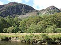 Crags above Borrowdale - geograph.org.uk - 546840.jpg