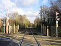 Crampmoor Level Crossing - geograph.org.uk - 618305.jpg