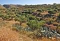 Crete Landscape R03.jpg