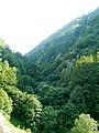 Crna Rijeka Gorge 7.JPG