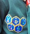 Cub Scout Challenge Badges 2017 a.png