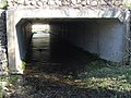 Culvert under the A494(T) - geograph.org.uk - 1261724.jpg