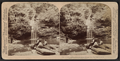 Curtain Falls, a pretty nook in picturesque Havana Glen, New York, U. S. A., by Underwood & Underwood.png