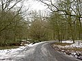 Cycle route 6 in Sherwood Forest - geograph.org.uk - 1159748.jpg