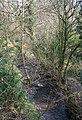 Cynllaith in Rhydycroesau - geograph.org.uk - 386240.jpg