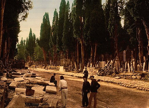 Cypresses and road leading to the cemetery, Scutari, Constantinople, Turkey, 1890s