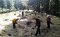 DYS Crew Finishing Up Planting, Willamette National Forest (34758931881).jpg