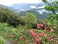 Daai Village 大隘村 - panoramio.jpg