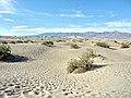 Death Valley Mesquite Flat Dunes 4240762.jpg
