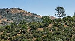 Del Puerto Canyon, California.jpg
