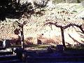 Delphi ext wall.jpg