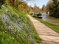 Devizes, Kennet and Avon Canal - geograph.org.uk - 1235954.jpg