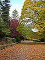 Devonshire Park 1 (4030109670).jpg