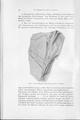 Die Klimate der geologischen Vorzeit 044.pdf