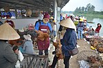 Disease Risk Reduction in Dong Ha Poultry Market, Quang Tri (6458103283).jpg