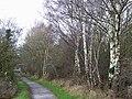 Dismantled Railway, Wombourne, Wolverhampton - geograph.org.uk - 628768.jpg