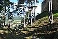 Divín - Divínsky hrad - priekopa.jpg