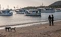 Dog and peoples in love, Juan Griego sunset.jpg