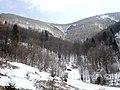 Dolina pod Skalkami - panoramio.jpg