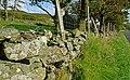 Drystone wall near Kilcoo and Slievenaman - geograph.org.uk - 971569.jpg