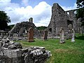Dundrennan Abbey - geograph.org.uk - 1512517.jpg