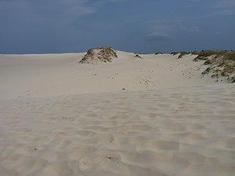 Słowiński National Park - Image: Dune in Słowiński National Park 02