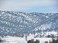 Eşşek dağı 2015 şubat - panoramio (4).jpg
