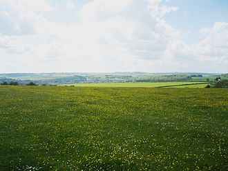 Berkshire Downs - Eastbury Down, Eastbury
