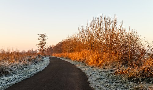 Eerste zonnestralen strijken over een winters landschap. Pad tussen Put van Nederhorst en Langweerderwielen. Locatie, Langweerderwielen (Langwarder Wielen) en omgeving 01.jpg