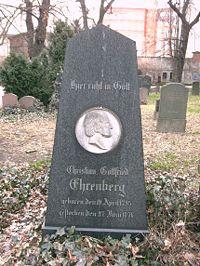 Ehrenberg grave.jpg