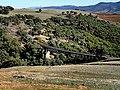 El Fernane الفرنان - panoramio (5).jpg