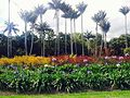 "El Jardín Botánico de Bogotá ""José Celestino Mutis.jpg"
