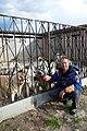 Eleveurs de huskies dans l'Oblast de Kostroma (6).jpg