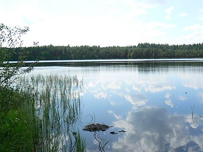 How to get to Engli Järv with public transit - About the place
