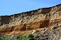 Eroded Sediments in Cliff at The Naze in Essex - Panoramio 52201169.jpg