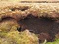 Eroded peat drain hole, South Grain - geograph.org.uk - 324337.jpg