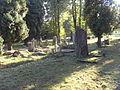 Evangelical Cemetery on Bystrzańska street in Bielsko-Biała (23).JPG