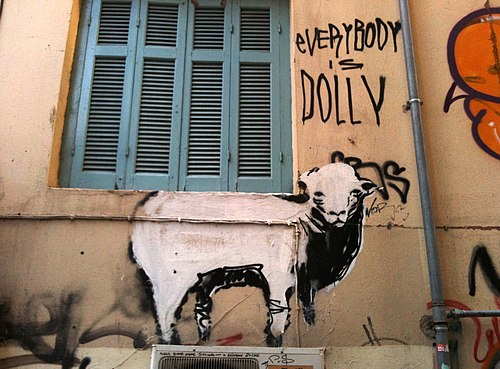 Everybody is Dolly