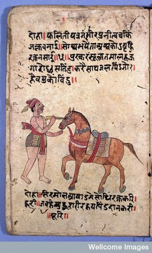 Veterinary medicine - Ancient India text, eye operation on a horse