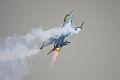 F16 - RIAT 2008 (3015547274).jpg