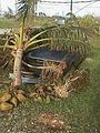 FEMA - 1084 - Photograph by David Fowler taken on 12-17-1997 in Guam.jpg