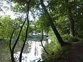 FFM-Nied Nidda-Altarm Waldspitze Uferblick N.jpg
