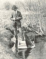 FMIB 42274 Two-foot water glass supported on four legs and provided with screen, are used for studying and photographic lampreys (Lampetra.jpeg