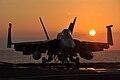F A-18E Super Hornet aircraft.jpg
