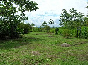 Stone spheres of Costa Rica - View of the Farm 6 Archaeological site