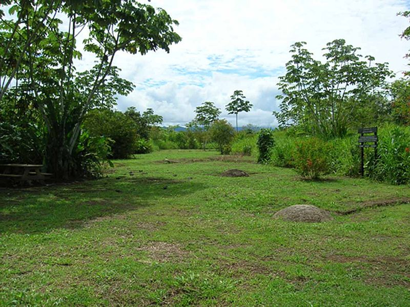 File:Farm 6 archaeological site, Costa Rica.jpg